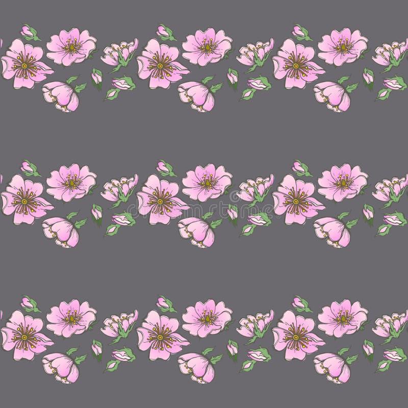Małej dzikiego psa róży tła bezszwowi kwiaty z pączka deseniowym boho projektują ilustracja wektor