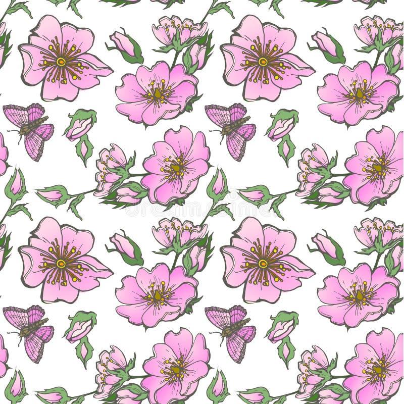Małej dzikiego psa róży tła bezszwowi kwiaty z pączka deseniowym boho projektują ilustracji