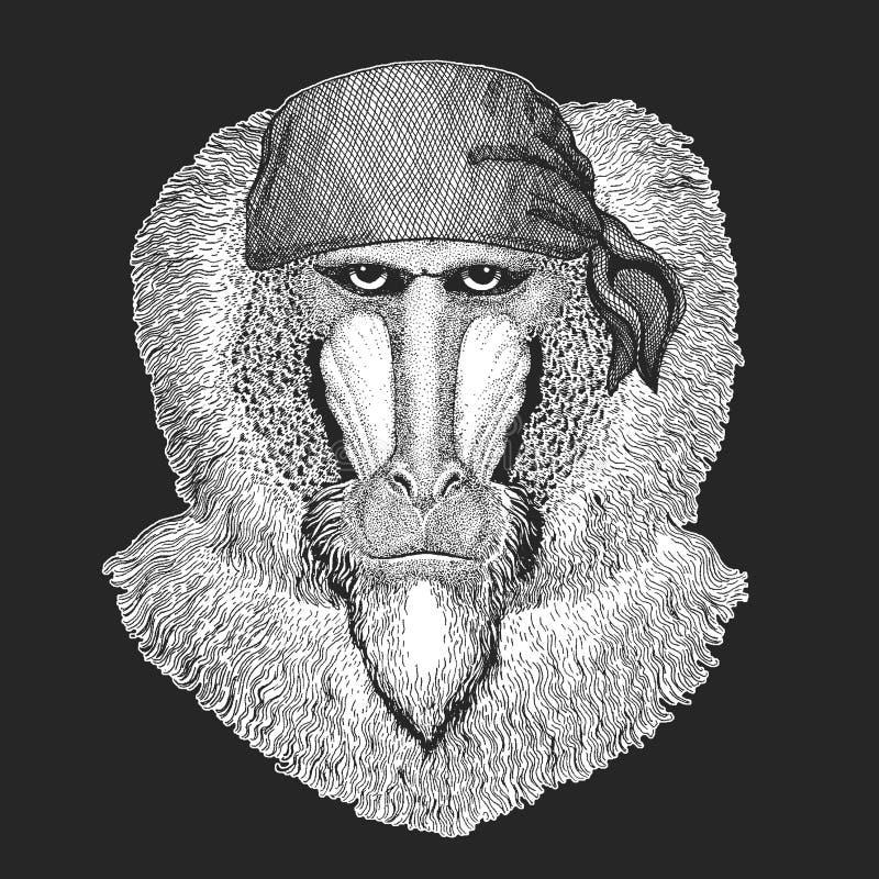 Małpa, pawian, małpa, małpuje Chłodno pirata, żeglarz, seawolf, żeglarz, rowerzysty zwierzę dla tatuażu, koszulka, emblemat, odzn ilustracji