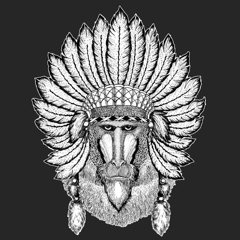 Małpa, pawian, małpa, małpuje Tradycyjnego etnicznego indyjskiego boho pióropuszu Plemiennego szamanu kapeluszowego Ceremonialneg royalty ilustracja