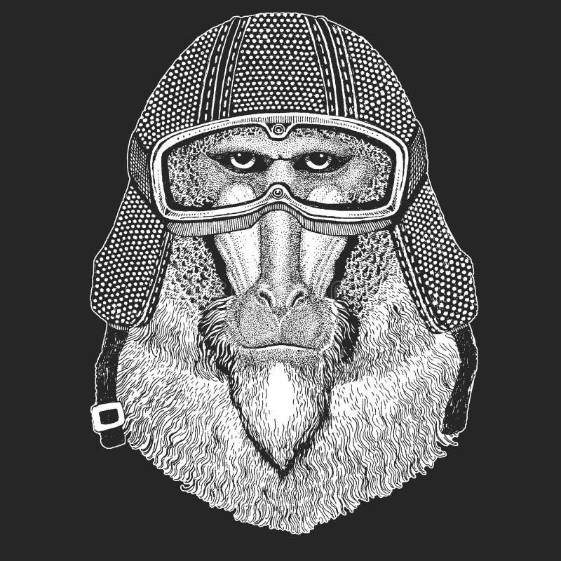Małpa, pawian, małpa, małpa Rocznika motocyklu hemlet Retro stylowa ilustracja z zwierzęcym rowerzystą dla dzieci, dzieciaki ilustracji