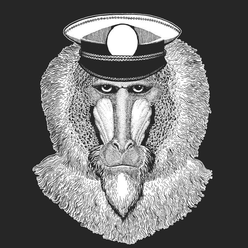 Małpa, pawian, małpa, małpa Wektorowy druk dla dzieci Capitan, pirata zwierzę Odważny żeglarz Projekt dla dziecina ilustracja wektor