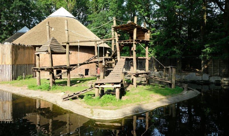Małpi boisko obok wody w zoo zdjęcie stock