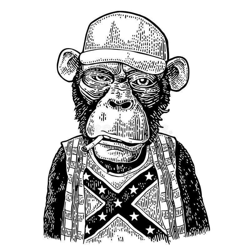 Małpi wsiok w kierowca ciężarówki nakrętce, koszulka z flaga konfederatem ilustracji