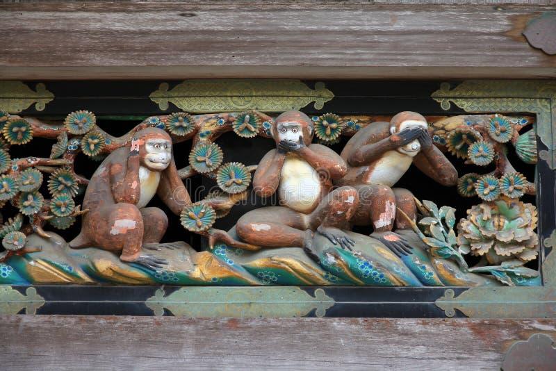 małpy mądre trzy obraz royalty free