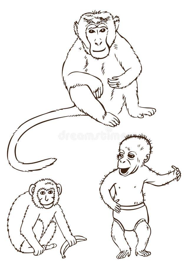 Małpy na białym tle ilustracji