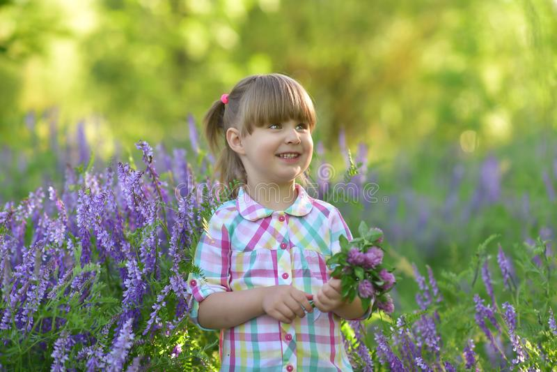 Mały śliczny dziewczynka stojak amile w kwiat trawie zdjęcia royalty free