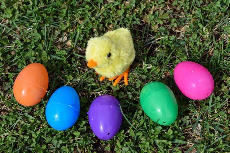 Mały Żółty kurczątko Otaczający Kolorowymi Wielkanocnymi jajkami Na Zielonej trawie zdjęcia royalty free