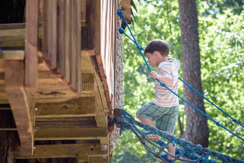Mały arywista bierze linowego most Chłopiec zabawa czas, dzieciaka pięcie na pogodnym ciepłym letnim dniu obrazy royalty free