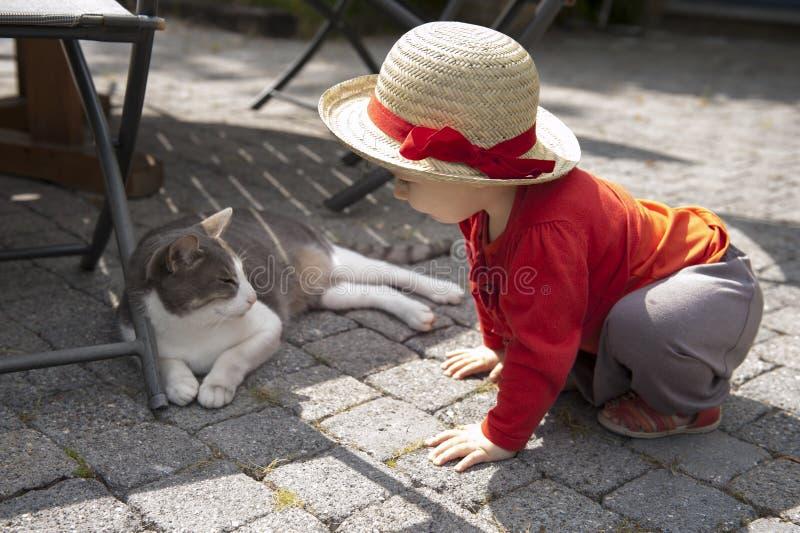 Mały berbeć opowiada kot zdjęcia stock