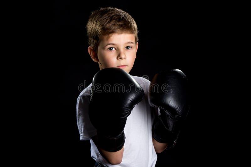 Mały boksera portret w czarnych bokserskich rękawiczkach w defensywnej pozyci zdjęcia stock
