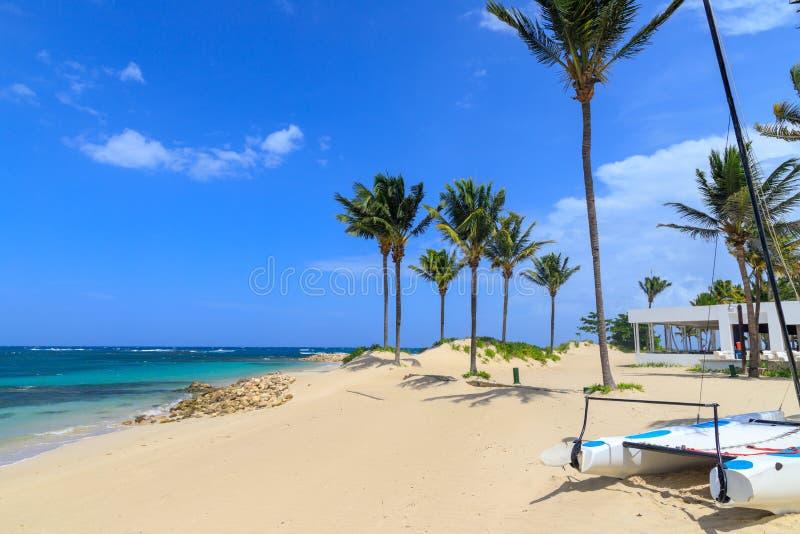 Mały catamaran kłama na plaży pod drzewkami palmowymi w Karaiby republika dominikańska zdjęcia royalty free