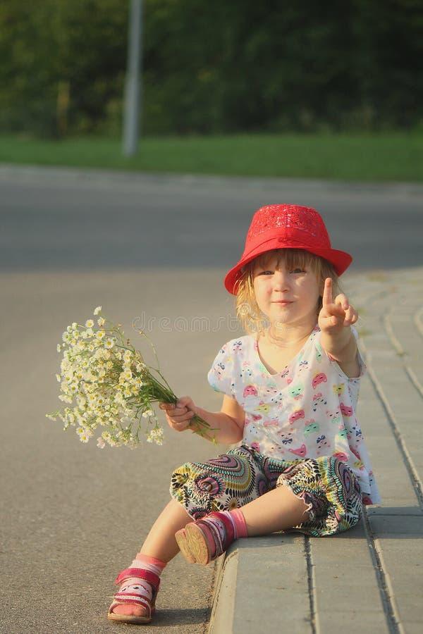 Mały Czerwony Jeździecki kapiszon zdjęcie royalty free
