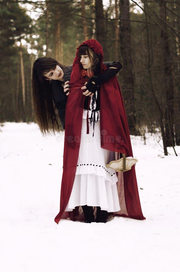 Mały Czerwony Jeździecki kapiszon spotyka wilka w lesie obrazy royalty free