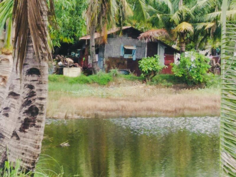 Mały dom blisko stawu fotografia stock