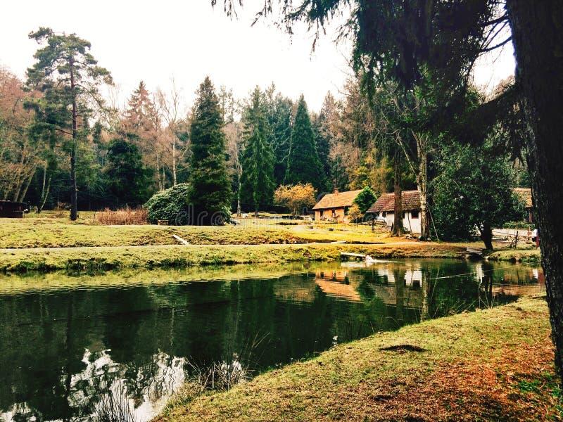 Mały dom wśród drzew obraz stock