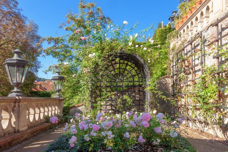 Mały Furstenberg ogród, punktu obserwacyjnego taras, rokoko tarasu ogród pod Praga kasztelem, część pałac uprawia ogródek obraz royalty free