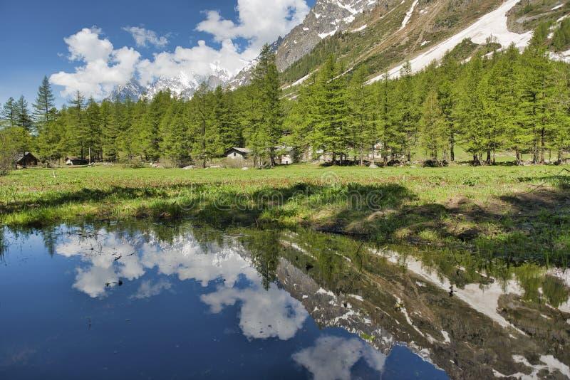 Mały jezioro w fretki dolinie obrazy stock
