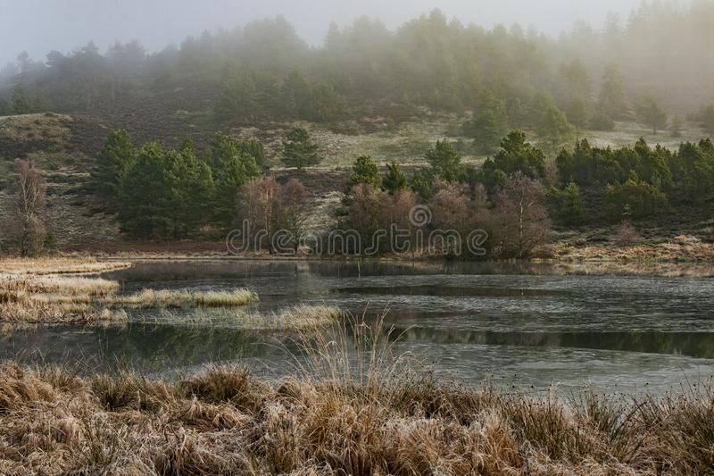 Mały jezioro w mgle fotografia royalty free