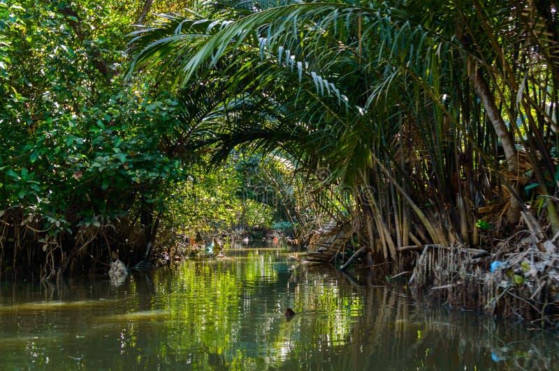 Mały kanał w Mekong delcie obraz stock