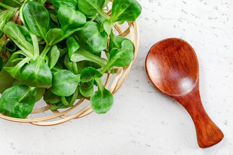 Mały kosz z kukurydzanej sałatki Valerianella locusta, malutka drewniana łyżka obok go na białej desce, fotografia z góry zielony fotografia royalty free