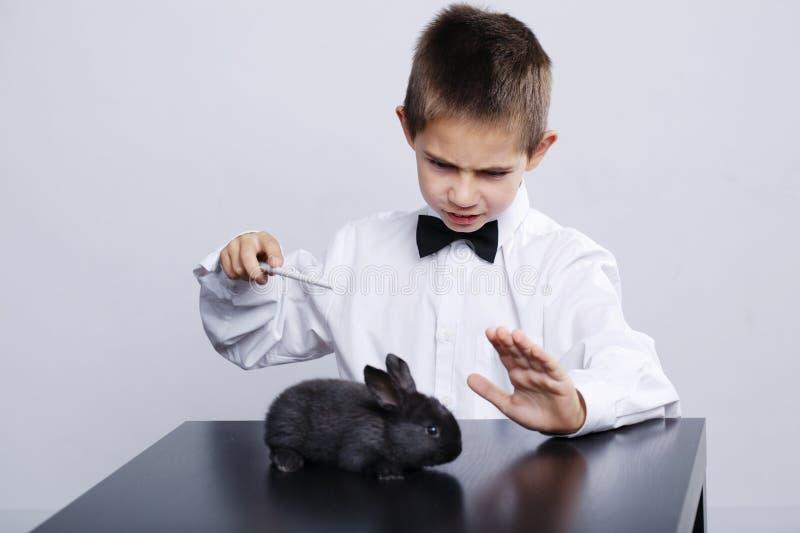 Mały magik z królika studia strzałem fotografia stock