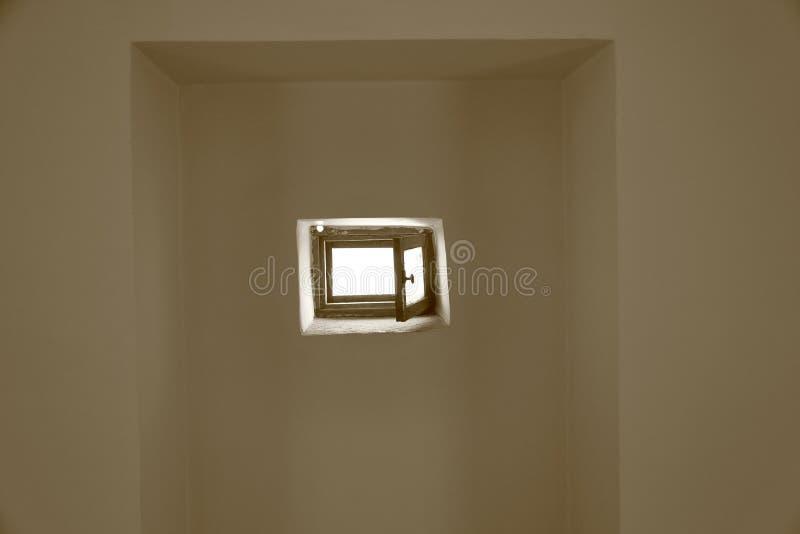 Mały nadokienny liść w ścianie zdjęcia stock