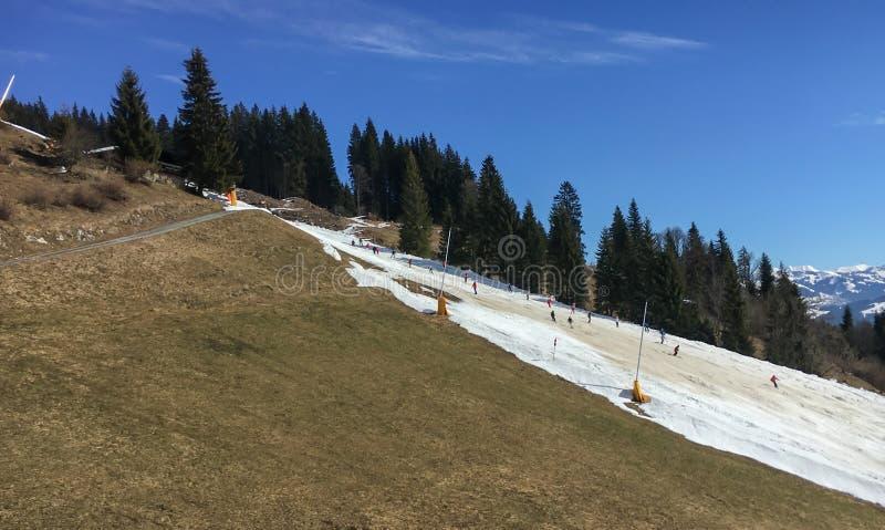 Mały narta bieg z brązu i roztapiających śnieżnych ofert złymi narciarskimi warunkami fotografia royalty free
