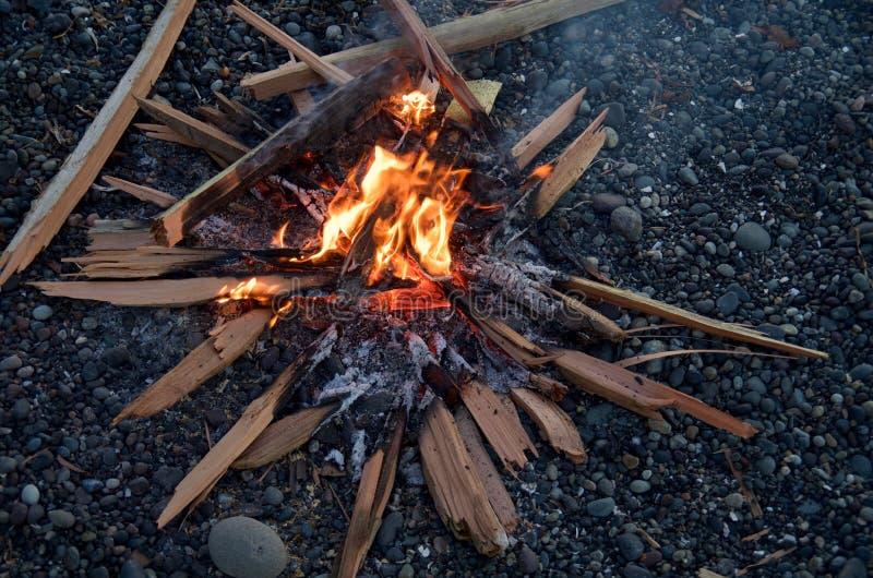 Mały ogień rozszczepiony cedr na otoczak plaży w wieczór obrazy stock