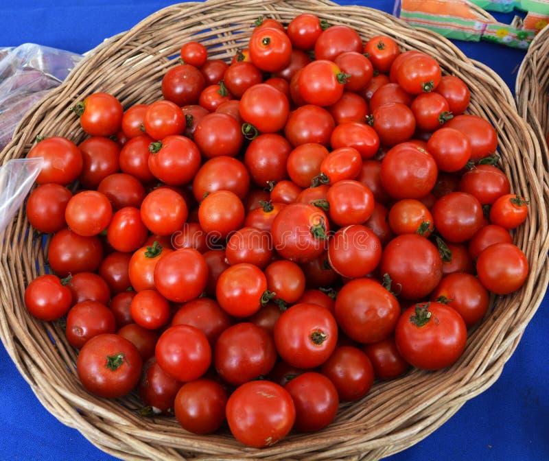 Mały pomidorowy kosz zdjęcia royalty free