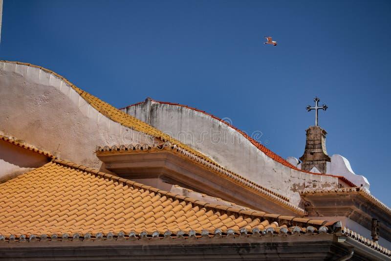 Mały ptasi latanie nad dachem dachówkowy kościół obraz royalty free