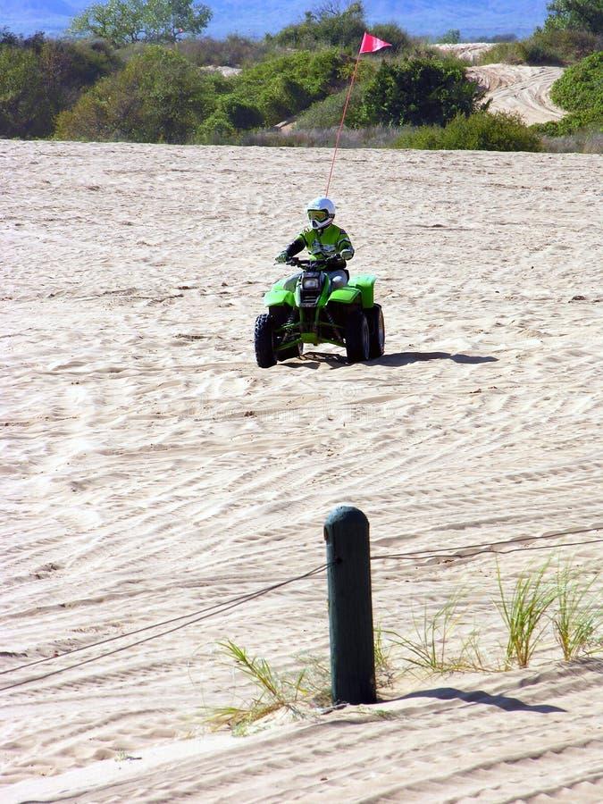 mały racer Sahara zdjęcie royalty free