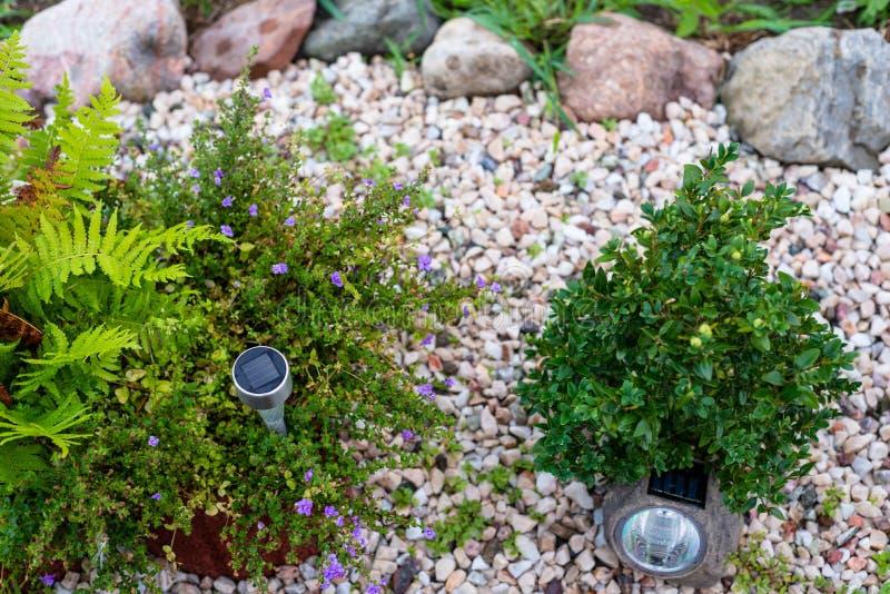 Mały rockery przed domem z roślinami, dekoracyjnymi otoczakami i lampami zasilać energią słoneczną, zdjęcia royalty free