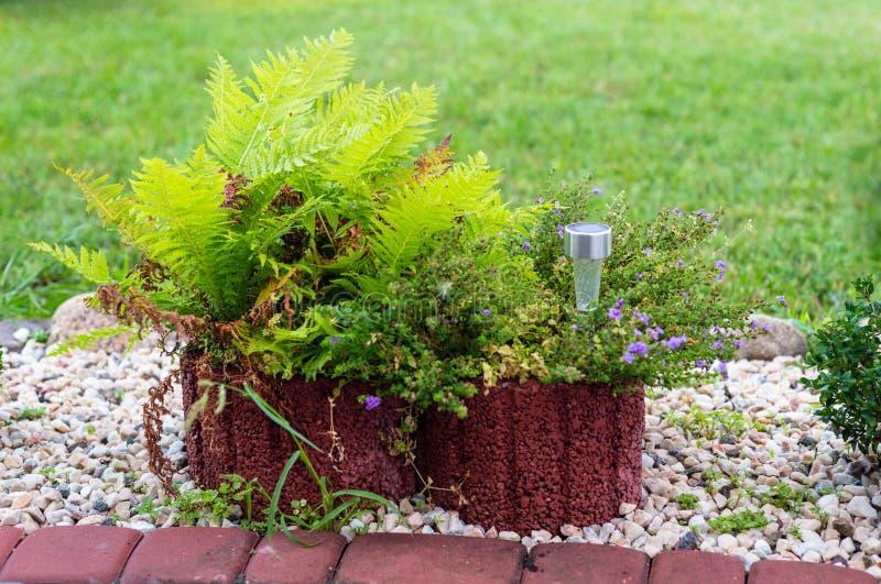 Mały rockery przed domem z roślinami, dekoracyjnymi otoczakami i lampami zasilać energią słoneczną, obraz royalty free