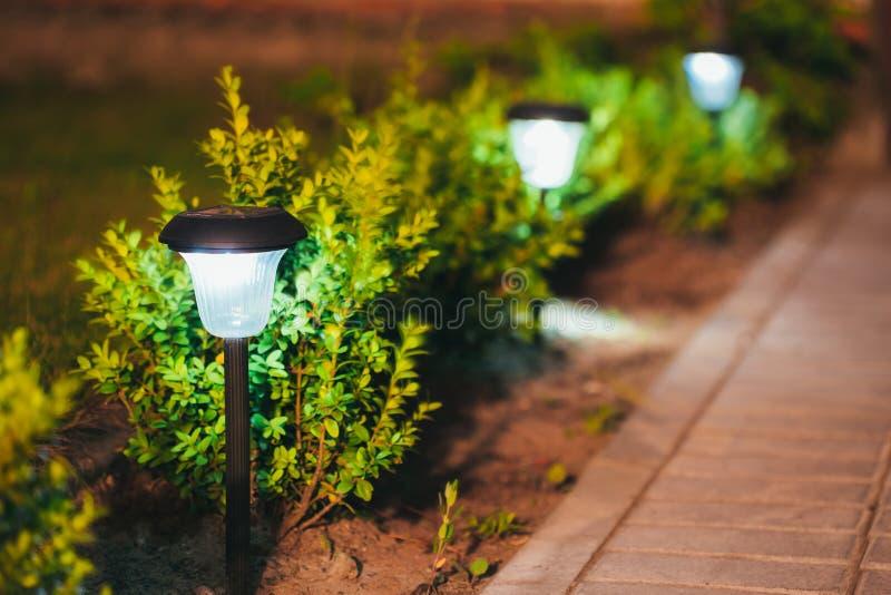 Mały Słoneczny ogródu światło, lampion W kwiatu łóżku ogród projektu ogrody Hamilton nowej Zelandii fotografia stock