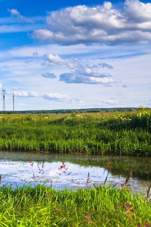 Mały staw na kwitnącej łące Bezbrzeżne Rosyjskie rozległość obraz stock