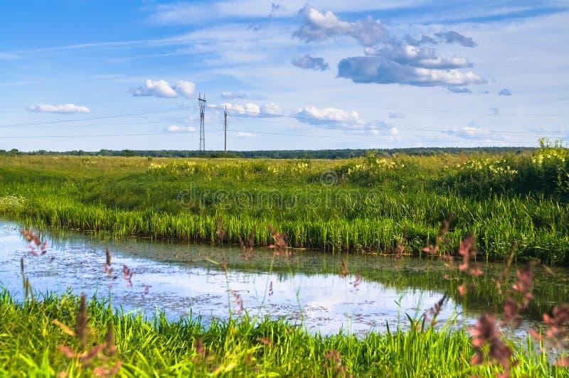 Mały staw na kwitnącej łące Bezbrzeżne Rosyjskie rozległość obrazy royalty free
