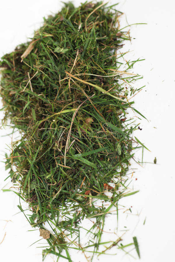 Mały stos zielona trawa zdjęcia royalty free