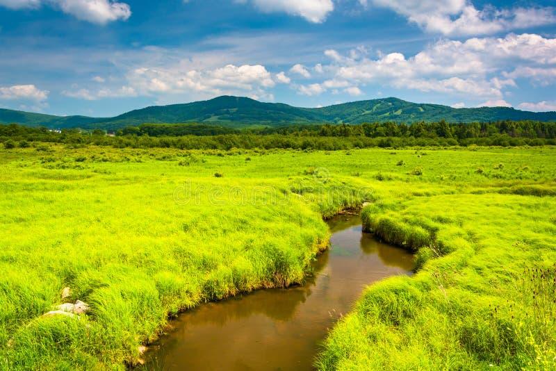 Mały strumień i odległe góry przy Canaan stanu Dolinnym parkiem, obraz stock