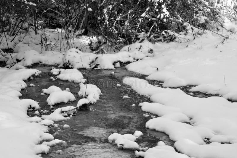 Mały strumień w zima śniegu obraz royalty free