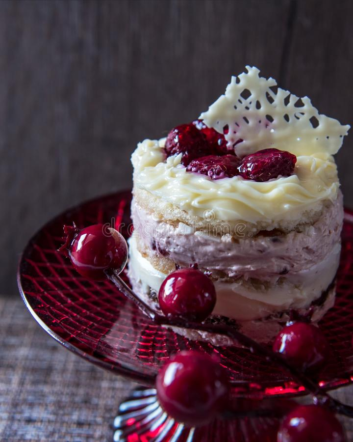 Mały tort z dwa rodzajami czekolada i kawałki malinki na czerwonej tacy obrazy royalty free