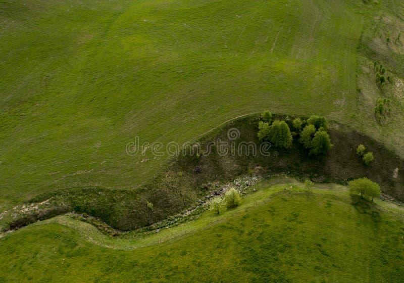 Mały zielony jar między jeziorami - truteń fotografia przegląda z góry obrazy royalty free