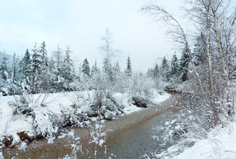 Mały zima strumień z śnieżnymi drzewami obrazy stock