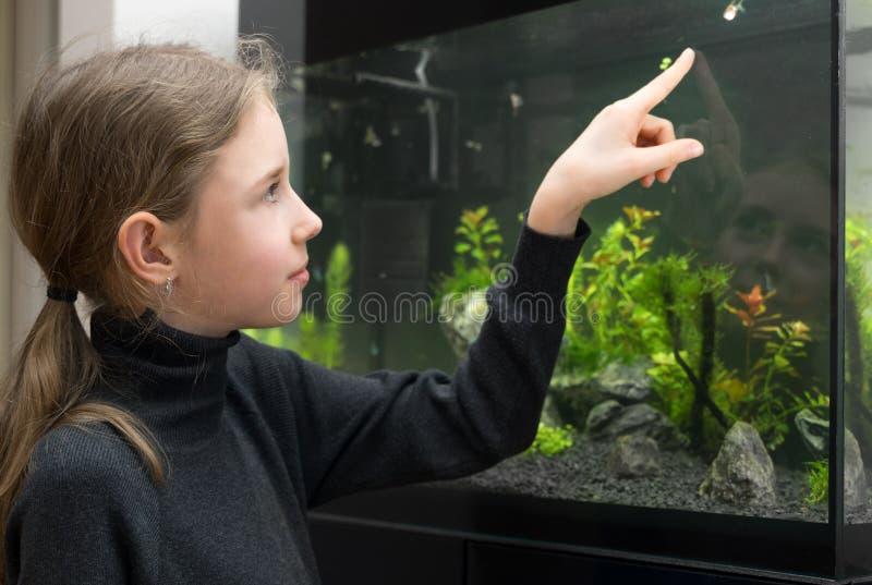 Małych dziewczynek spojrzenia przy rybą zdjęcie stock