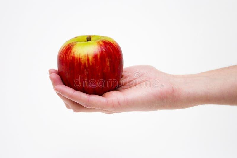 ma czerwone jabłko obraz stock