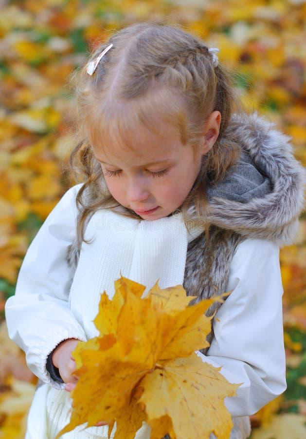 Download Mała Dziewczynka Robi Herbarium Obraz Stock - Obraz: 34431959