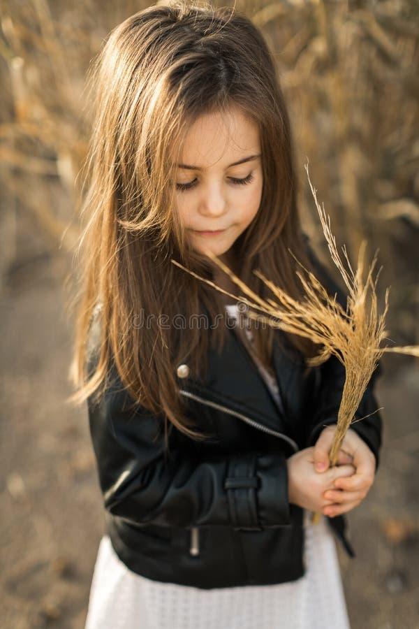 ma?a dziewczyny natura obraz stock