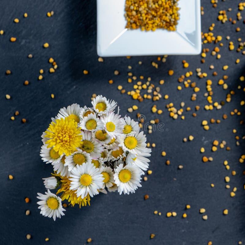 Ma?a wi?zka stokrotki i taraxacum z pollen granulami pszczo?y na czarnym ?upku wsiadamy zdjęcia stock