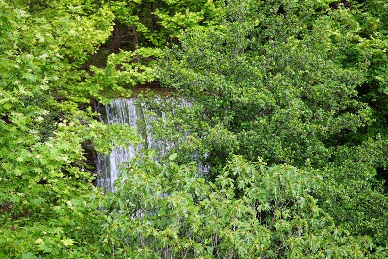 ma?a wodospadu zdjęcia royalty free