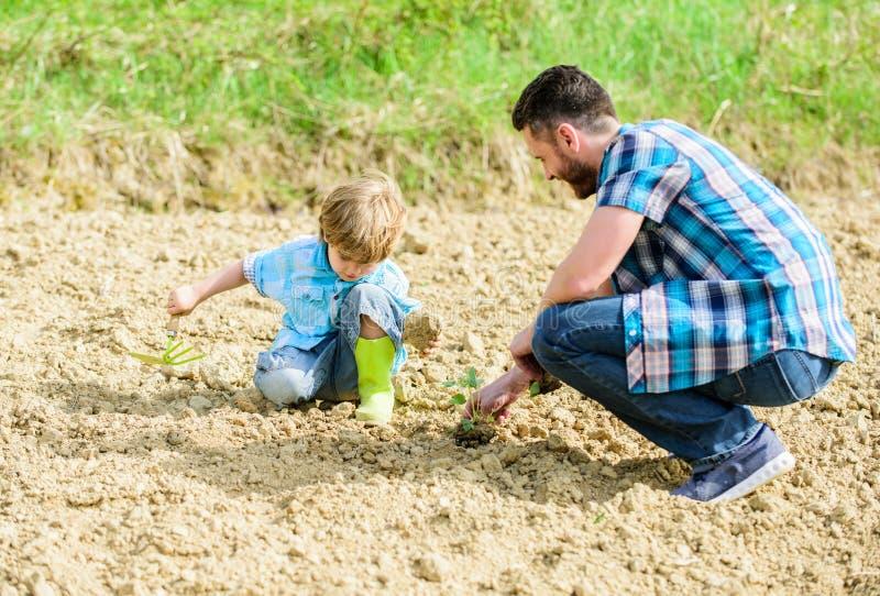 ma?y ch?opiec dziecka pomocy ojciec w uprawia? ziemi? nowe ?ycie ziemie i u?y?niacze Szcz??liwy Ziemski dzie? Zwolennik ?rodowisk zdjęcie royalty free